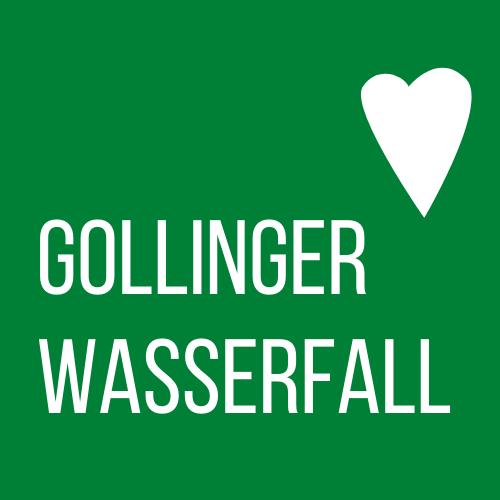 www.gollinger-wasserfall.com