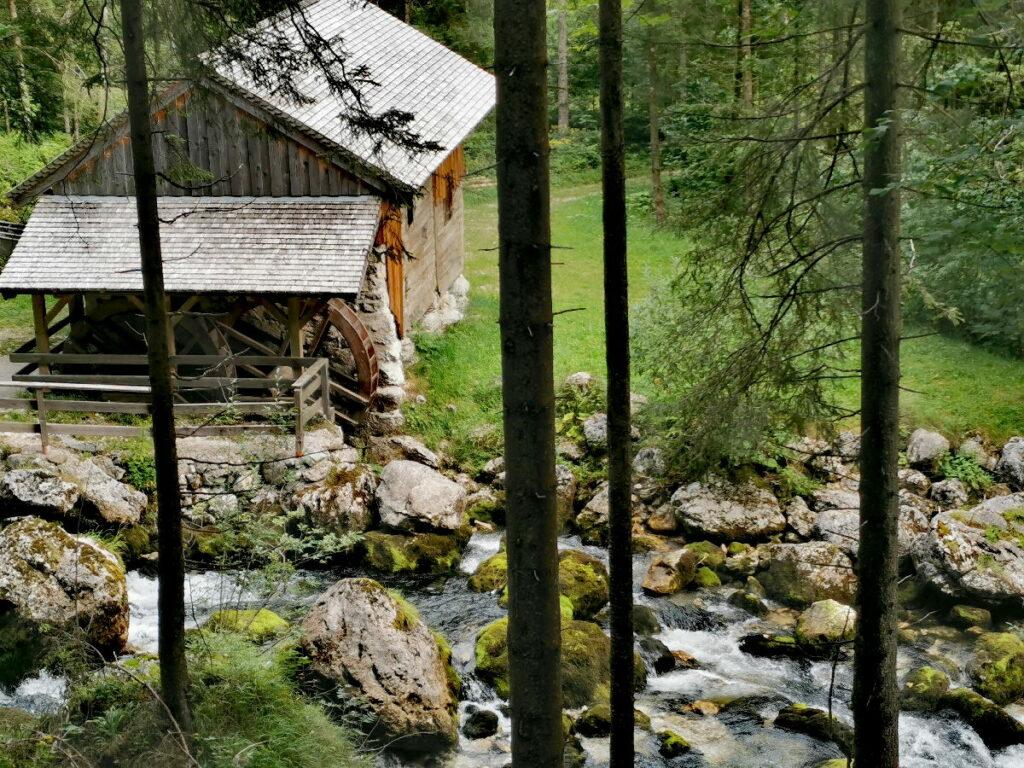 Die historische Mühle am Gollinger Wasserfall - vom Wandersteig siehst du hinunter
