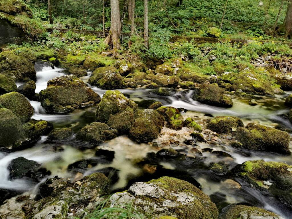 Schau dir auch die romantische Flußlandschaft nahe der Mühle an!