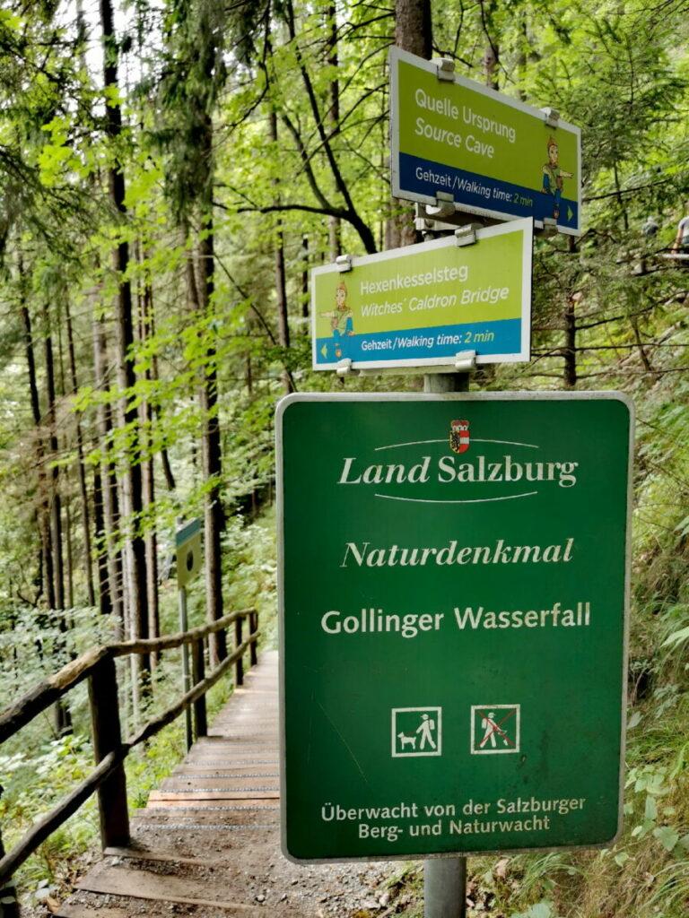 Rund um das Naturdenkmal Gollinger Wasserfall wandern