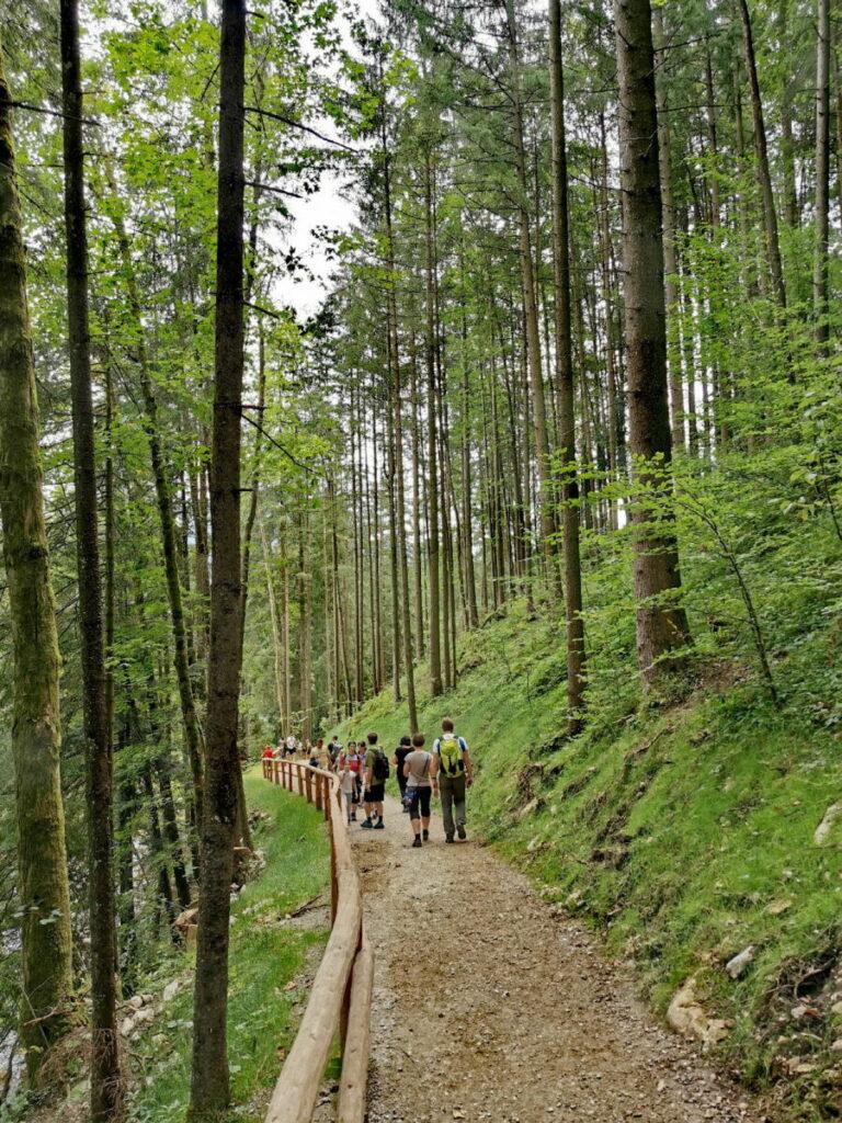 Gollinger Wasserfall Wanderung - vom Kassenhaus zur Wasserfall Arena