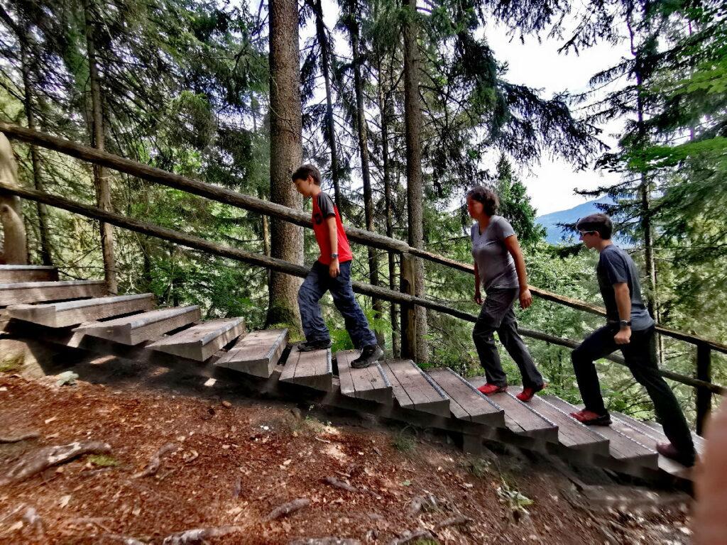 Neben dem Gollinger Wasserfall führt diese Holztreppe durch den Wald hinauf