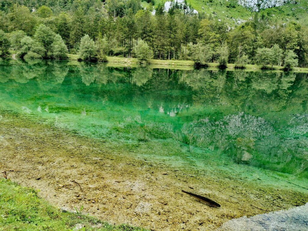 Der glasklar grün schimmernde obere Bluntausee: Siehst du den Fisch?